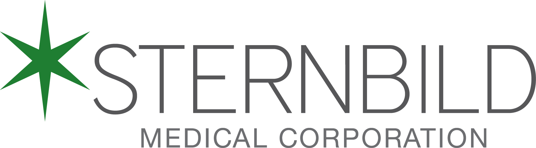Sternbild Inc.